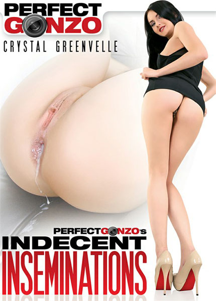 Indecent Inseminations (2017/Perfect Gonzo/WEBRip/SD)