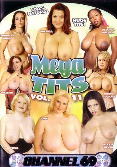 Mega Tits 11 Scene 4
